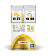 YOLKED - Clinically Proven and NSF-Certified All Natural Muscle Building Supplement - Increase Lean Muscle, Reduce Muscle Loss, and Improve Recovery with Protein's Perfect Partner, 12 Servings