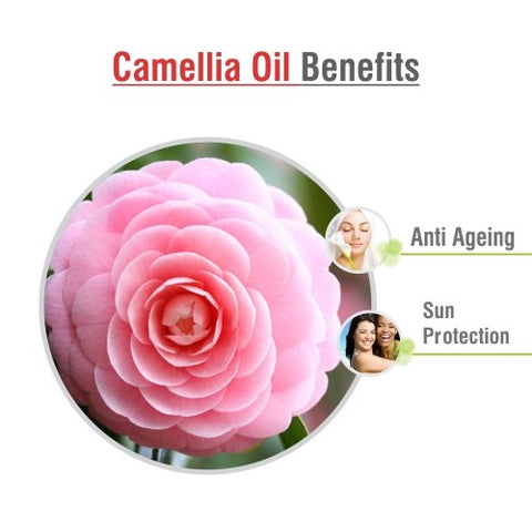 Camellia Oil (Camellia Sasanqua) 100% Pure & Natural Undiluted Uncut Premium Carrier Oil | Best for Aromatherapy | Therapeutic Grade - 100 ML