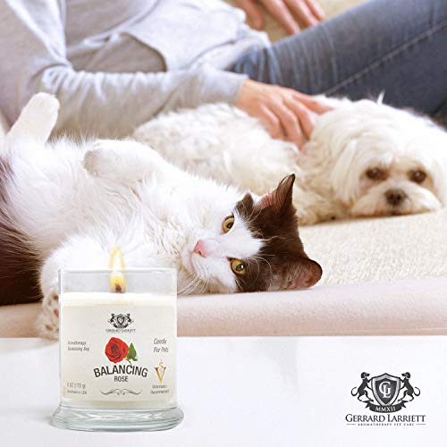 Rose Aromatherapy Deodorizing Soy Candle for Pets, Candles Scented, Pet Odor Eliminator & Animal Lover Gift