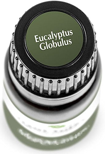 Plant Therapy Eucalyptus Globulus Essential Oil 10 mL (1 oz) 100% Pure, Undiluted, Therapeutic Grade