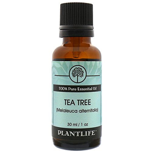 Plantlife Tea Tree Essential Oil, 100% Pure Therapeutic, Aromatherapy Grade, 30 mL