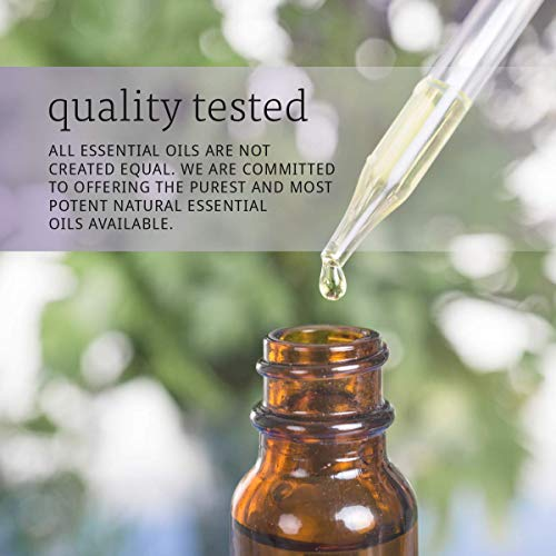 Now Essential Oils, Oil of Oregano, 25% Blend of Pure Oregano Oil in Pure Olive Oil, Comforting Aromatherapy Scent, Steam Distilled, Vegan, 1-Ounce