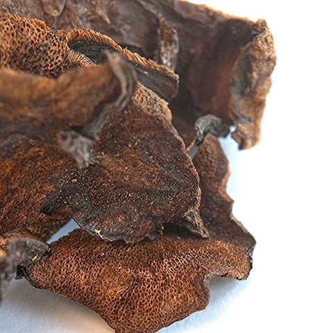 Spice Jungle Dried Bolete Mushrooms (European) - 16 oz.