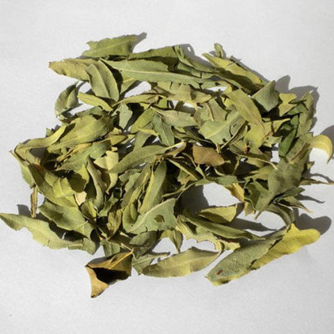 250g Apocynum Venetum Tea/ Luo Bu Ma Chinese Healthy Tea