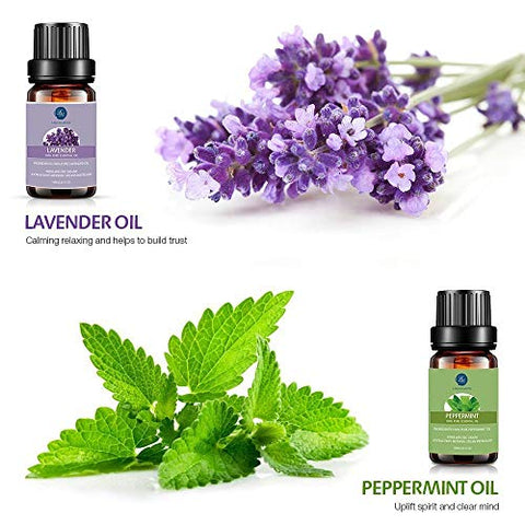 Lagunamoon Essential Oils Set, Aromatherapy Oils Set Includes Lavender, Tea Tree, Peppermint, Lemong