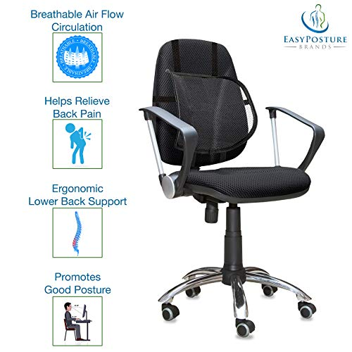 Easy Posture Lumbar Back Support Mesh (Black Mesh, 1 Pc, 2 Pc)