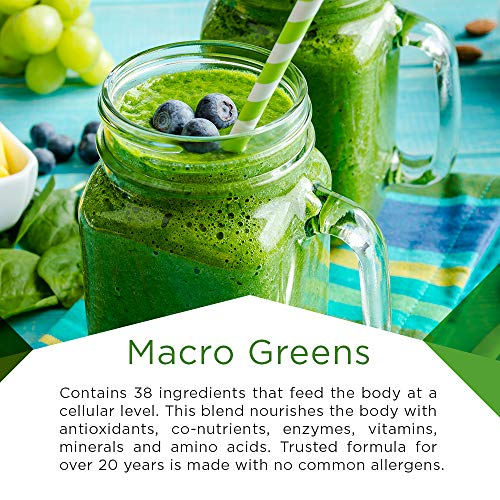 Macro Life Naturals Macro Greens Superfood â?? Organic   Vegan   Non Gmo   38 Nutrient Rich Ingredien