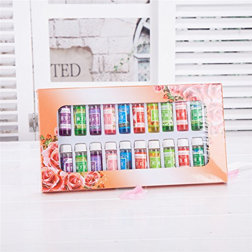 Thy Collectibles A Pack Of 24 Fragrance Oils Aromatic Perfume Oils In 12 Various Scents 5 Ml Each Bot