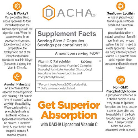 Dacha Nutrition Natural Liposomal Vitamin C   Immune System & Collagen Booster, High Absorption Fat