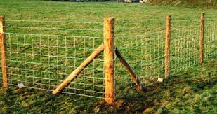 Fencing Post