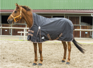 Equitheme Tyrex High Neck 1200D Turn Out Rug [0374008640]