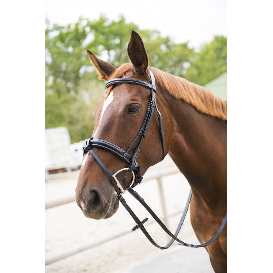 "Norton Luxe Wide ""Softy"" Bridle Flash Noseband [037301826]"