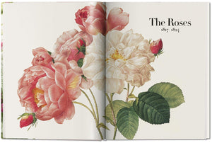 Redouté: The Book of Flowers (Versão Mini)