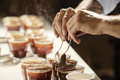 Specialty coffee testing