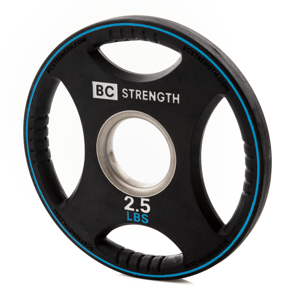 2.5lb Weight Plates (set of 2)