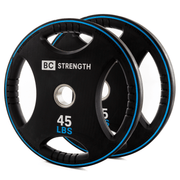 45lb Weight Plates (set of 2)