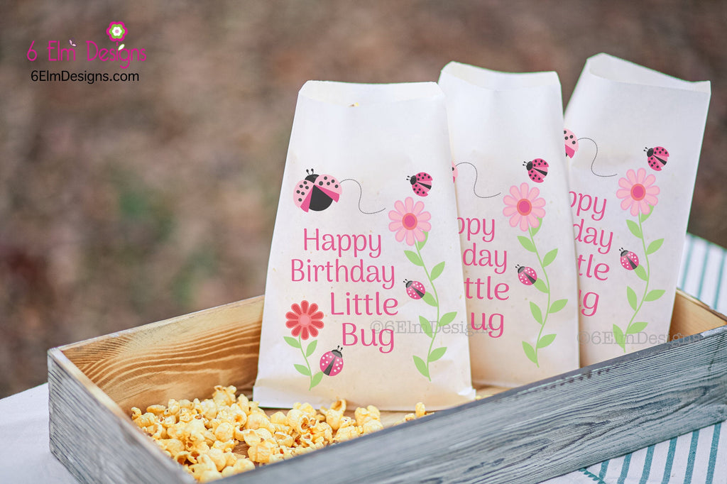 Happy Birthday Little Bug Pink Ladybug Kids Party Favor Bags, Birthday Favor Goodie Bags