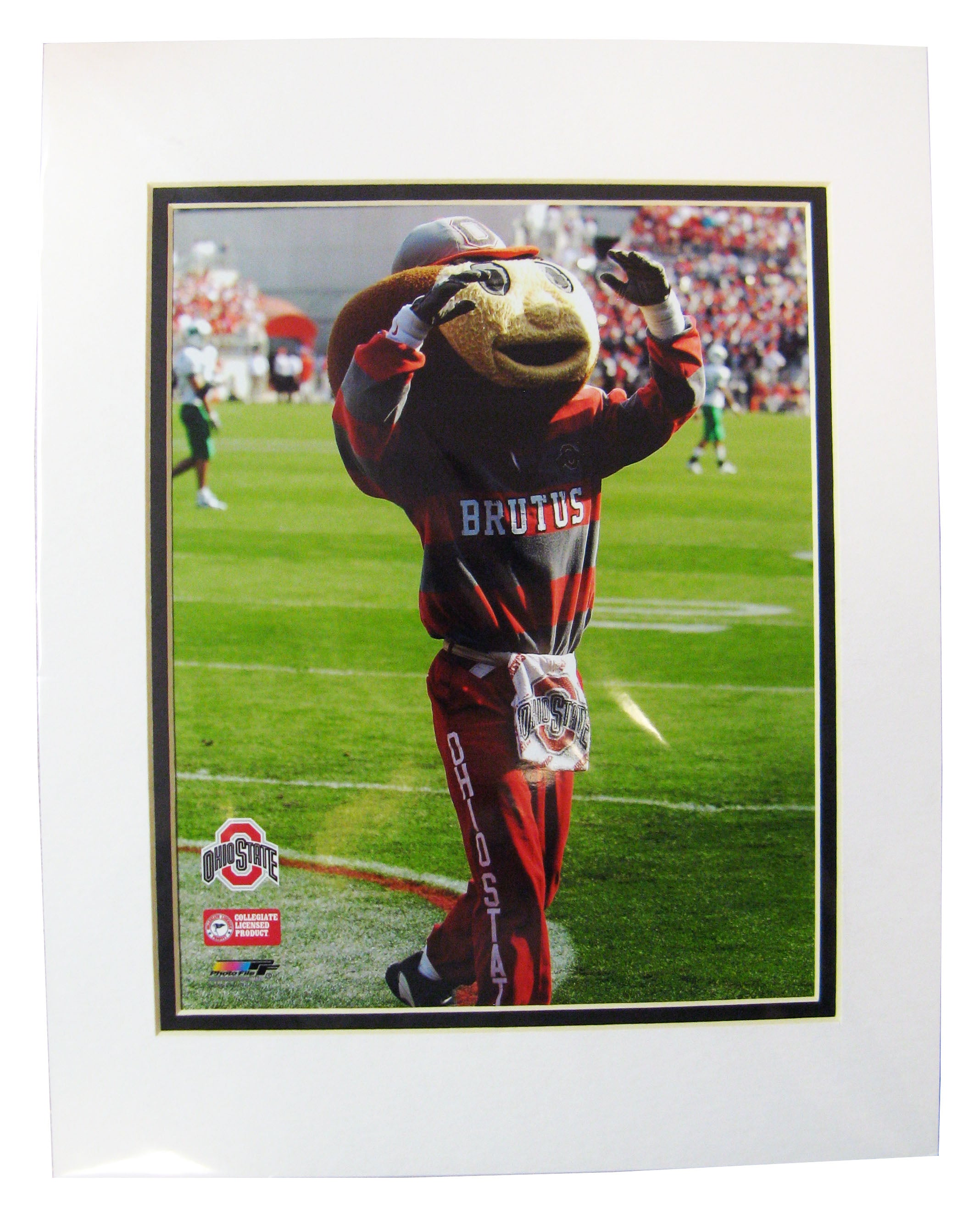 Unsigned Ohio State Brutus Buckeye 8x10 Matted Photo - Sports Butler