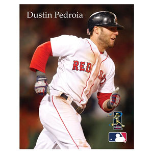MLB Boston Red Sox Dustin Pedroia Canvas Art - Sports Butler
