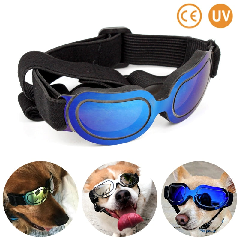 Colorful Dog Glasses 🐶-A Better Product - Sports Butler