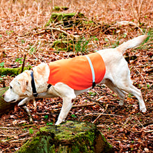 Load image into Gallery viewer, Tourbon Hunting Outdoor Dogs Vest
