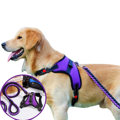 Dog Harness Leash Set Reflective Adjustable Vest Harnesses for Dog Walking