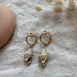 Luella Conch Shell Earrings