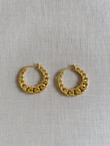 Celine Chain Luxe Earrings