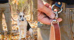 The Ranger Belt Attachment | Dog Leash For Your Belt or Bag