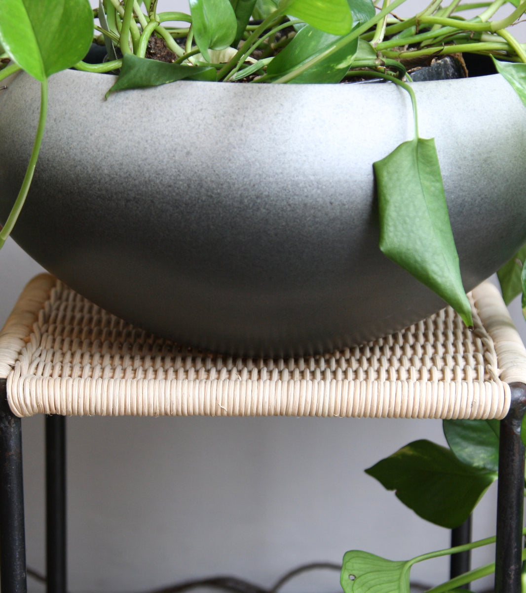 Medium Onion Shaped Planter <br> Gradient Grey Glaze