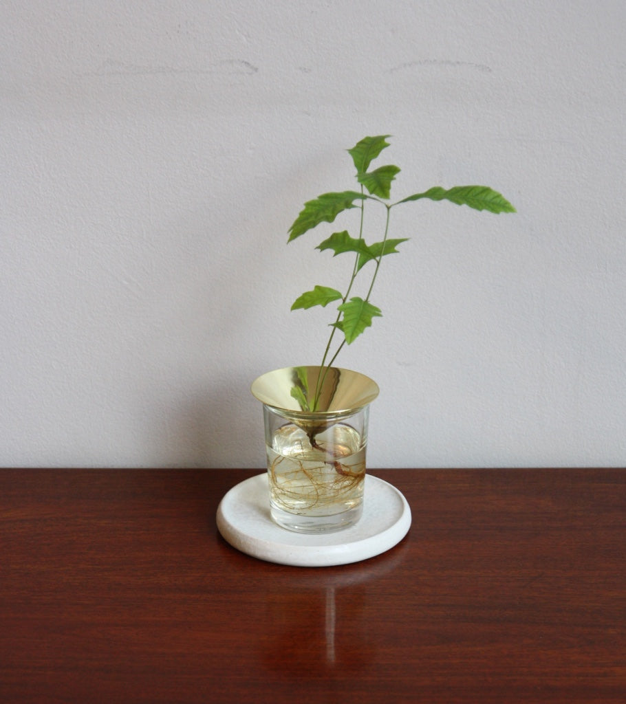 Creative Acorn Solid Brass Cone Floating Forest Michael Anastassiades - Image 4