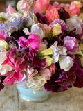 Somerset eco flower farmer and sustainable flower farmer Georgie Newbery will share all her tips and tricks for successfully growing several crops of sweet peas a year, via this online workshop.