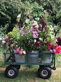 A bucket of seasonal, British grown eco friendly flowers sent to you by post, for you to arrange as you please. Perfect for DIY wedding flowers, parties, thank yous. English country flowers from our cut flower farm in Somerset.