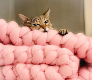 SOLD OUT: Knitting Workshop: Learn to Knit a Chunky Baby Blanket or Pet Bed in 1 Hour!