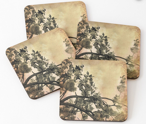 Brushed Cherry Blossoms Coaster Set by One Day One Image