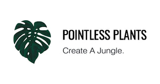 Pointless Plants