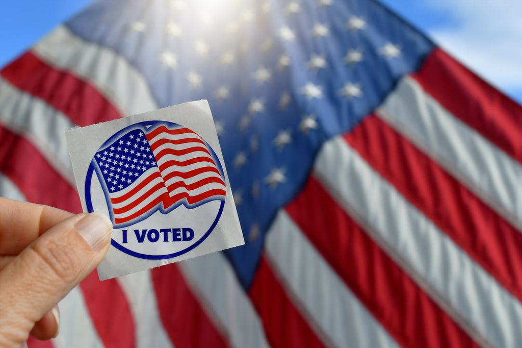Election Day: Voting Safely