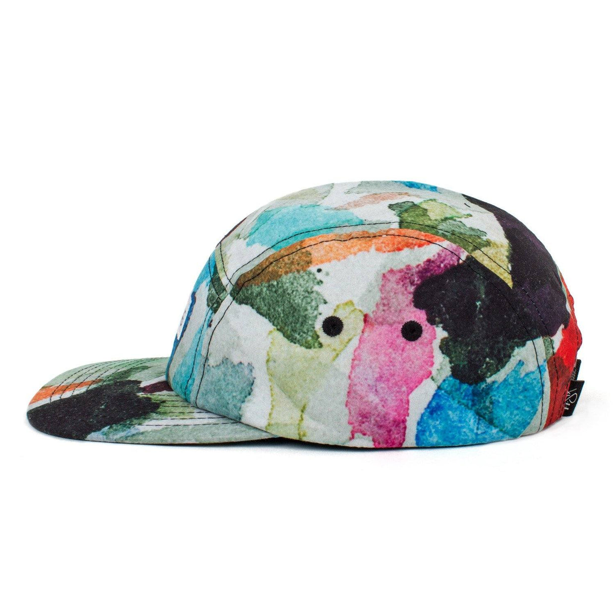 Reach Records Lecrae 'Anomaly Pattern' 5 Panel Hat - Side
