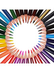 Signature Color Pencils 36pc