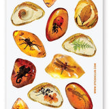 amber bugs and insects sticker sheet