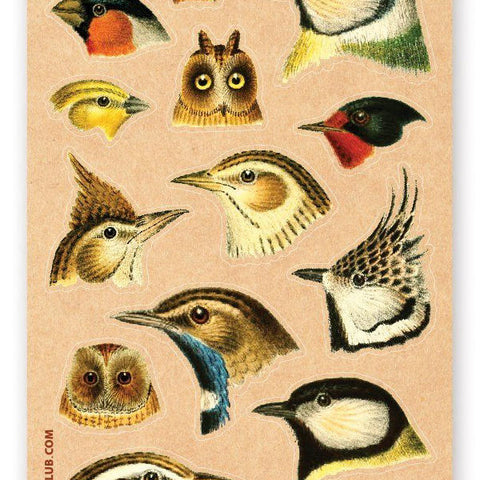 bird head bust species types sticker sheet