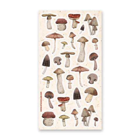 Assorted Mushrooms