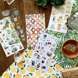 cactus planter house plant sticker sheet