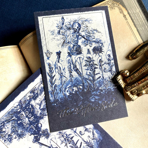 skeleton fields note cards