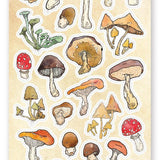 wild mushroom picking sticker sheet