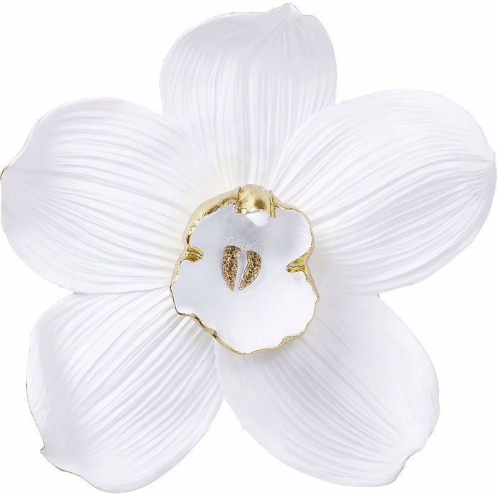 Orchid 54 Wall Decoration - White