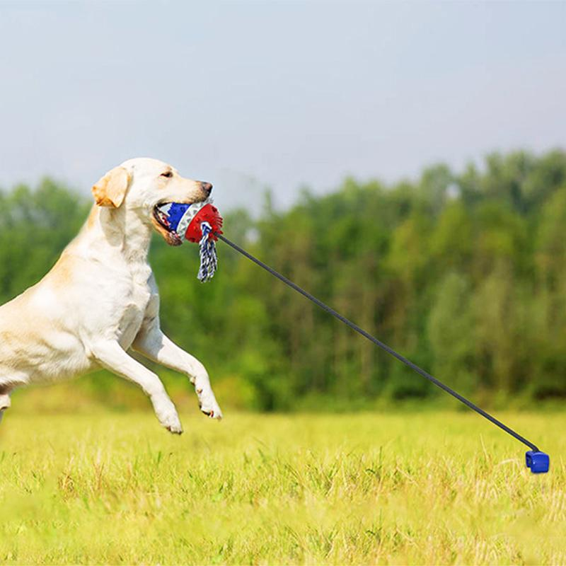 Pet Rope Ball Outdoor Training Toy