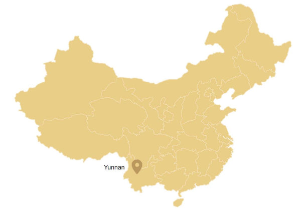 Yunnan, a dark tea region in China (on a map)