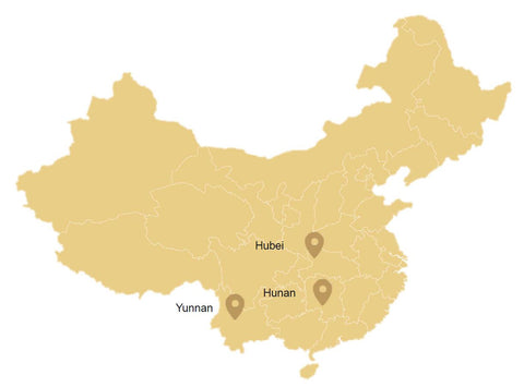 Dark tea regions in China on a map