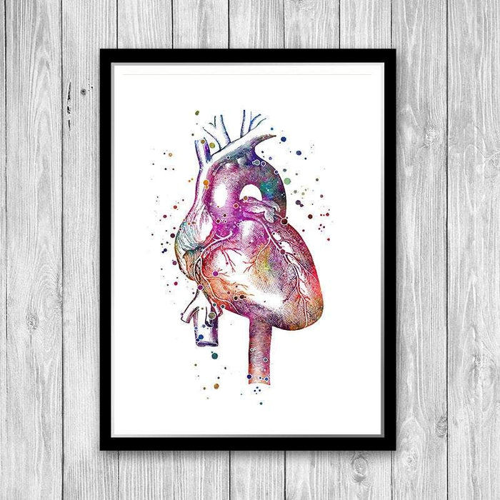 Anatomical Heart Watercolor Print